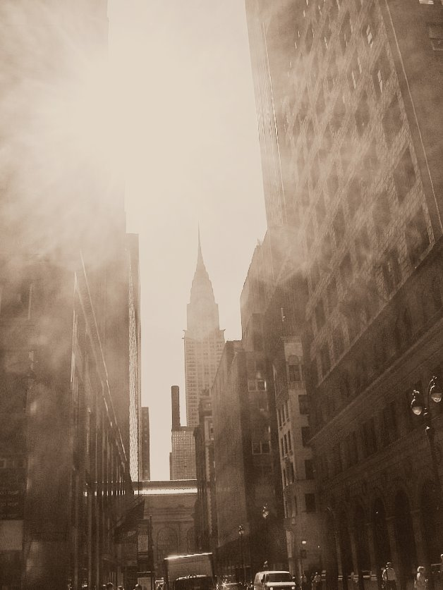 New York City Sunflares