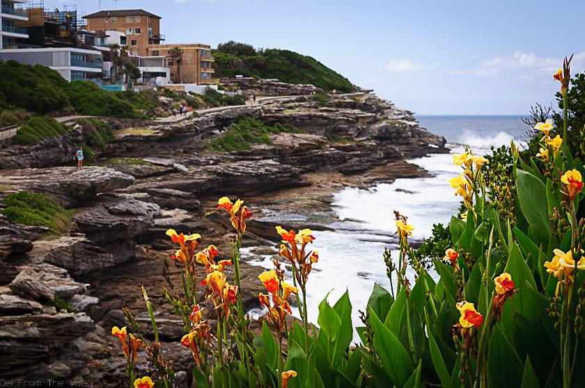 MacKenzie's Bay Sydney