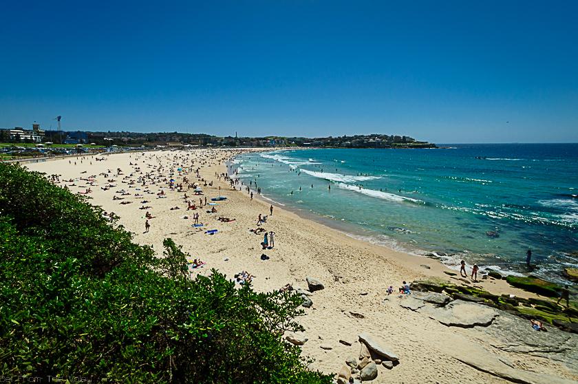 Busy Bondi Beach in Sydney