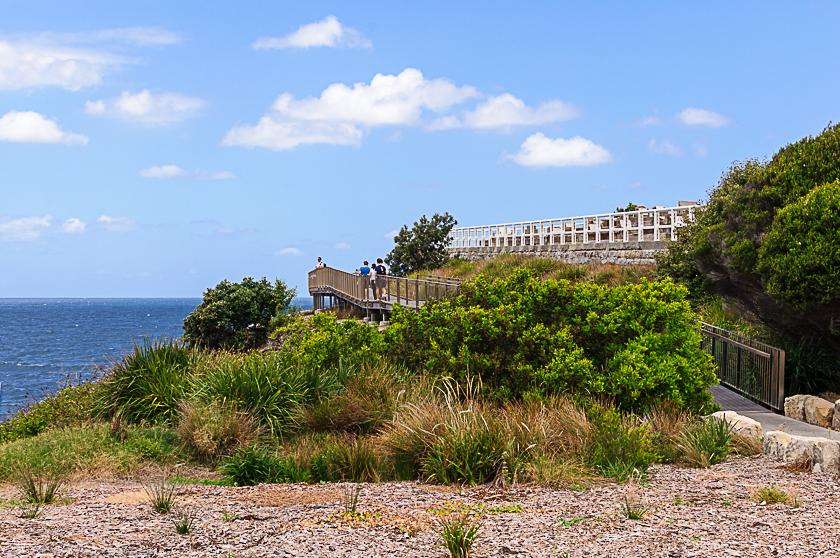 Boardwalk Bondi to Coogee Coastal Walk