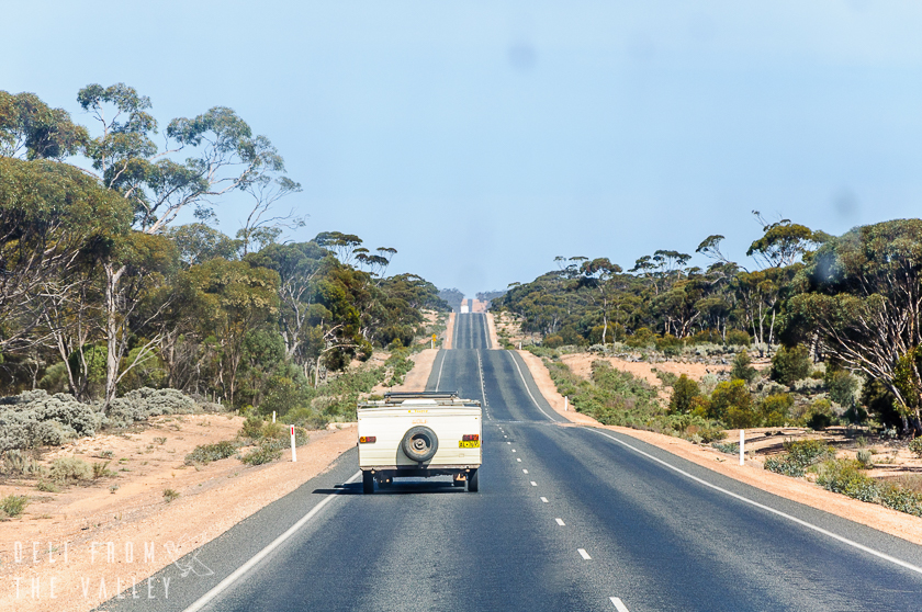Driving on The Eyre Highway