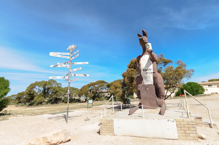 Eucla Giant Kangaroo Statue