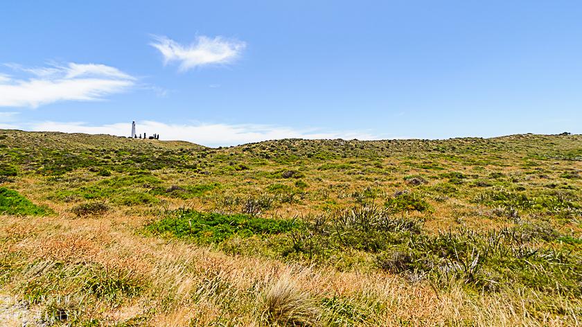 Rottnest Island 840 (12 von 90)
